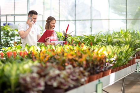 glasshouse: Two young florists check order list in glasshouse