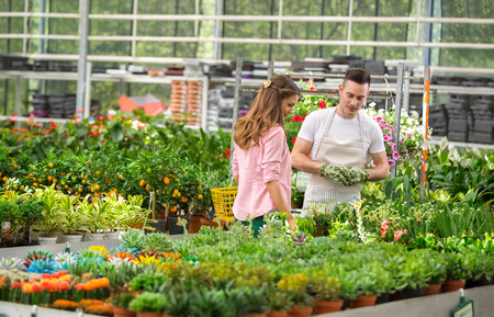 in the greenhouse: The customer and the florist watch exhibited flowers for sale in a greenhouse Stock Photo