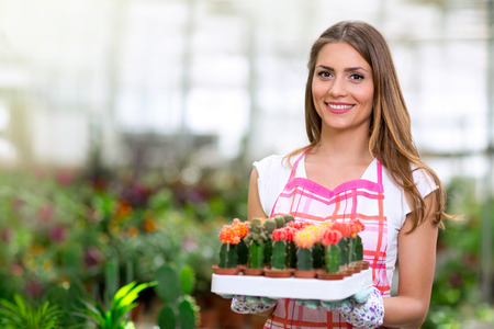 flowering cactus: cheerful woman holding a cactus in greenhouse Stock Photo