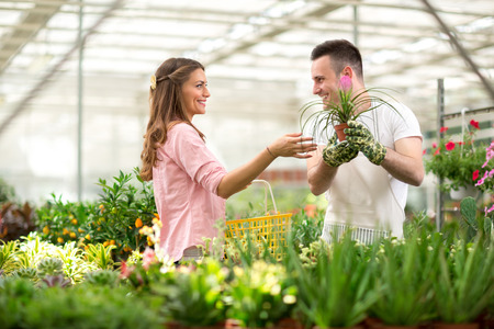 assistant: Customer seek advice of the seller for the purchase of flowers in glasshouse store Stock Photo