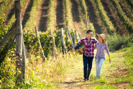 Couple of winegrowers walking through the huge vineyard