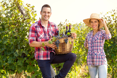 Cheerful winegrowers standing in vine rows