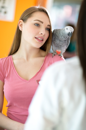 infirmary: Owner of parrot listens advices of doctor with pet on shoulder in vet infirmary