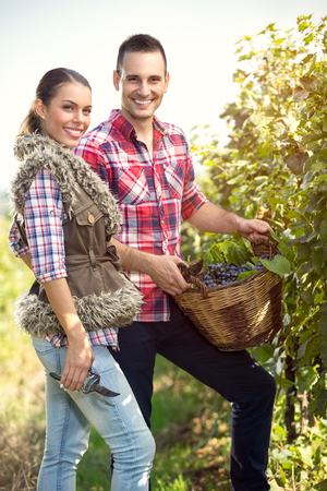 wicker work: Cheerful  winegrower couple in vineyard
