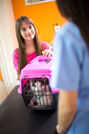kitties: Cute little girl brought her sick cat for checkup in vet clinic Stock Photo