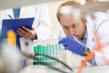 observing: Chemical technician observing and checking liquid from test tube