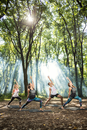 jungle gym: Group of sporty persons doing stretching exercises illuminated by sun rays in nature Stock Photo