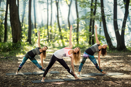 outdoor: Group exercises, stretching and relaxing in nature