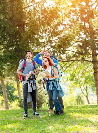 vertical orientation: Sunny day in green forest during hikers break from trudge Stock Photo