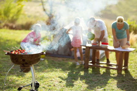 camping equipment: grilled meat skewers smoke barbecue