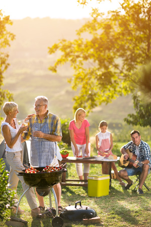 barbecue: smiling grandparents drinking wine and enjoying picnic with family