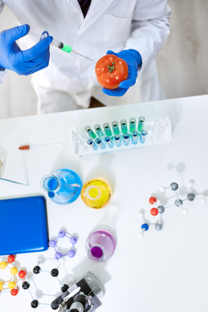 genetically: Scientist genetically modifying vegetables in the laboratory