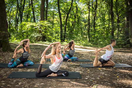 jungle gyms: Fitness group practice relaxing anti-stress stretching in peace and harmony of nature