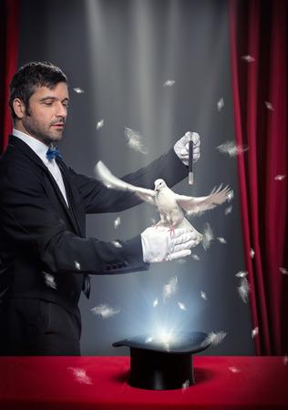 goochelaar uitvoeren van magische truc met de duif op theatrale podium