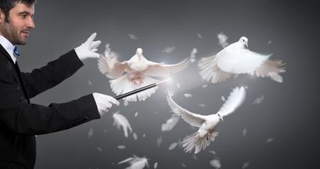 Mago realiza el truco con una paloma blanca Foto de archivo - 61606462