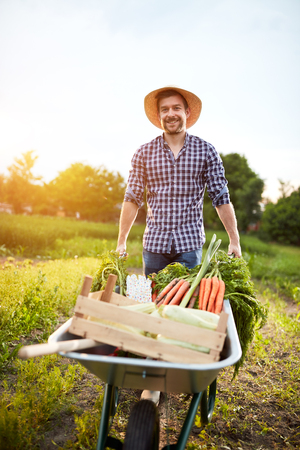 Farmer in garden with vegetables in wheelbarrow Imagens