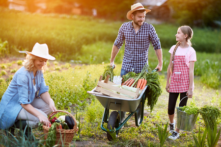 diligent: Diligent farmers family in garden Stock Photo