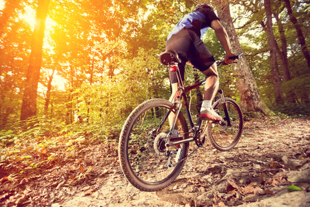 bike race: biking - rear wheel of a mountain bike