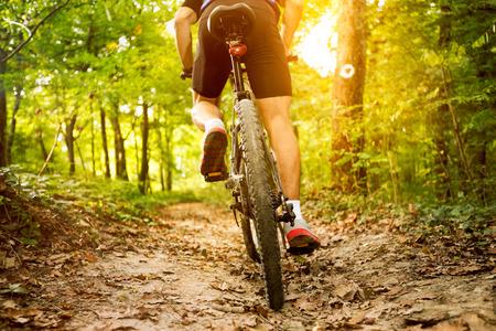 산악 자전거의 뒷보기 스톡 콘텐츠
