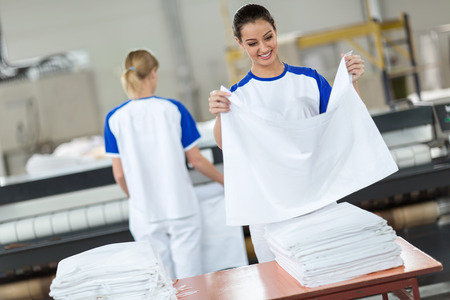 dry cleaner: Employee agree ironing textiles in dry cleaner