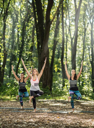 joga: Group exercises and relaxing in nature Stock Photo