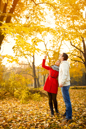 Couple in love looking trees with yellow leaves in autumn in park photo