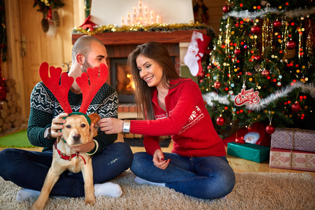 pareja en casa: Young couple making fun with nice dog for Christmas