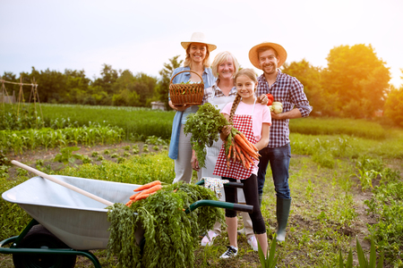 Farmers with freshly picked vegetables in the field Zdjęcie Seryjne