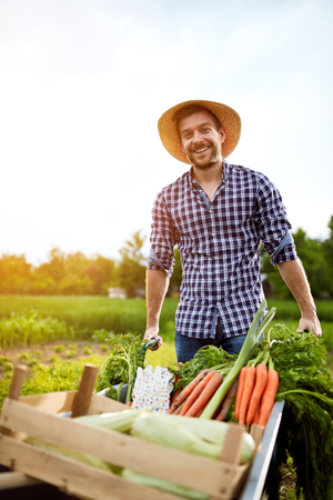 diligent: Young cheerful farmer with wheelbarrow with vegetables in garden Stock Photo