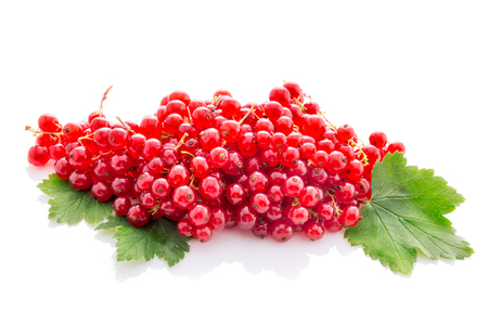 bunch red currant with leaves isolated on white background