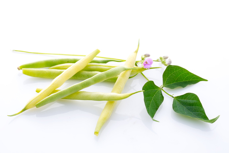 yellow and green string bean with leaves and blossom isolated on white