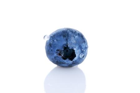 single blueberry isolated on white background Stock Photo