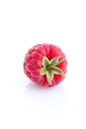 single raspberry isolated on white background