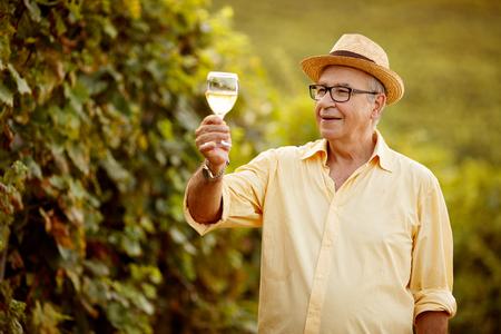grape harvest- smiling winemaker in vineyard