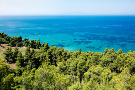 Top view on clear seaside and green Mediterranean forest Banque d'images
