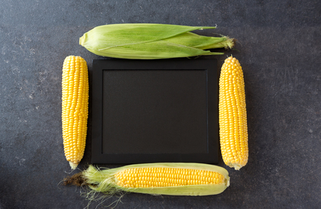 yellow sweet corn with frame-copy space