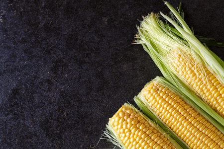 Fresh organic yellow sweet corn on black table- copy space Reklamní fotografie