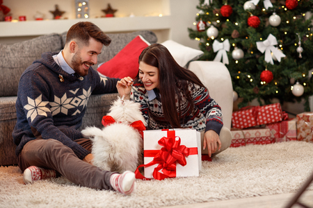 Cheerful couple having Christmas celebration at home