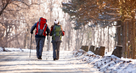 Hikers couple with backpacks in snowy forest, back view