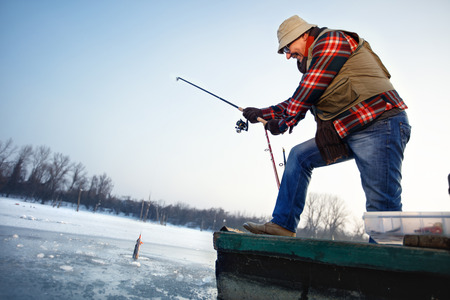 Mature fisherman draws hooked fish from frozen water