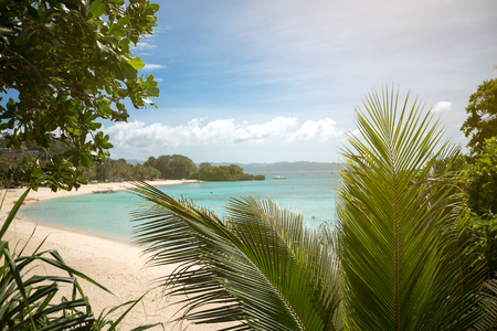 secret beach, hidden by palm trees and greenery
