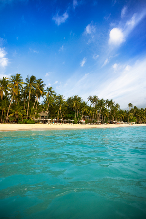 Paradise lagoon view from sea with coconut palms
