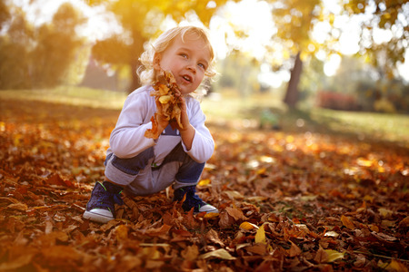 Cute blond boy hold colorful leaves