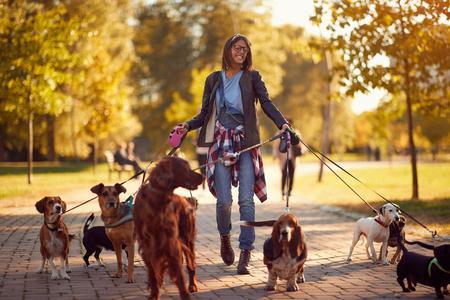 Szczęśliwa kobieta wyprowadzająca psa z psami podczas spaceru na świeżym powietrzu