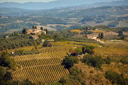 Beautiful Tuscany landscape with hill, house and vineyard.