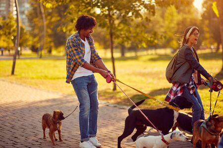 Professional Dog Walker - Happy group of dogs with couple dog walker enjoying in walk city.