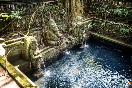 Sacred pool in temple at Monkey Forest Sanctuary in Ubud, Bali,Indonesia 免版税图像