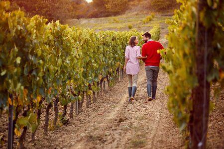 Happy couple walking in between rows of vines on autumn vineyard
