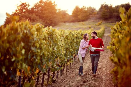 Smiling man and woman walking in between rows of vines Stock Photo