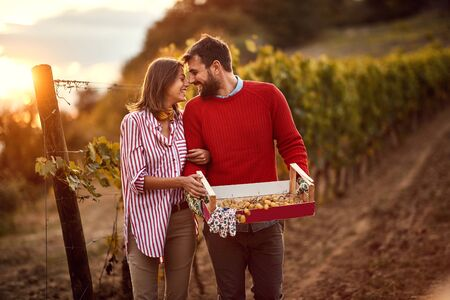 Grape harvesting- Smiling couple winemakers walking in between rows of vines Stock Photo